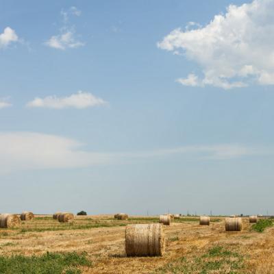 Žemės ūkio sklypai (rekreaciniai)