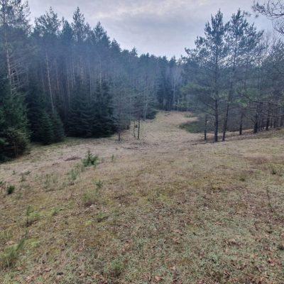 Miško paskirties žemės sklypai Kukiškės 3